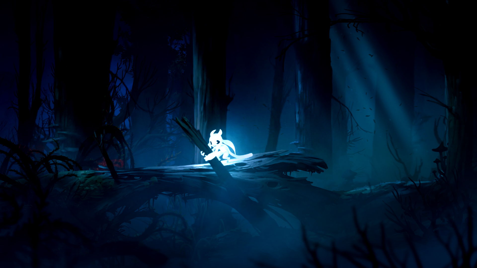 Xbw Review Ori And The Blind Forest
